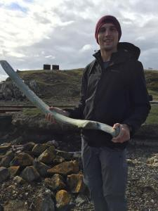 A washed-up whale rib