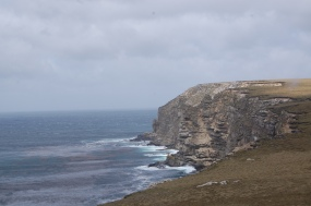 The cliffs on the Sound, thr whale feeding route but we were too early