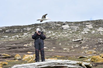 When you're so busy taking a photo, you miss the albatross 1ft above you