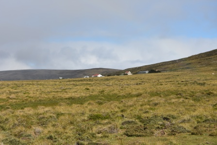 The very 'Falklands' settlement of Wreck Point