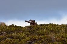 The old WWII gun guarding the Sound