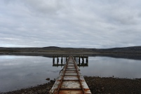 The jetty, formerly used for wool and resupply, then for landing troops, now used for nesting