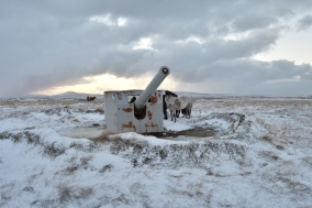 WWI guns on Canopus Hill