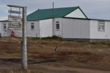 The house I stayed in, with a lost penguin